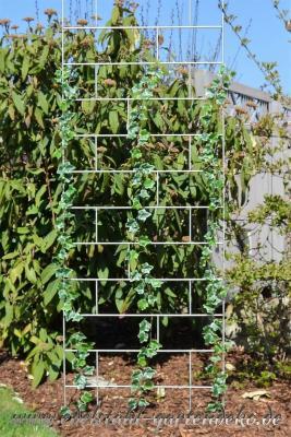 rankgitter celina aus edelstahl eine pracht f r ihre pflanzen. Black Bedroom Furniture Sets. Home Design Ideas