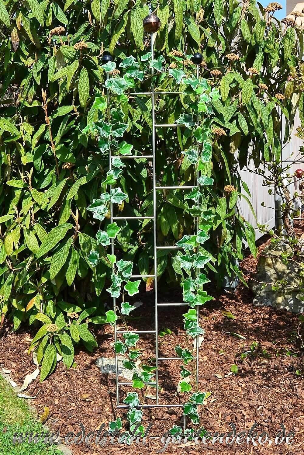 Rankgitter lea aus edelstahl eine perfekte rankhilfe f r kletterpflanzen - Gartendeko stahl ...